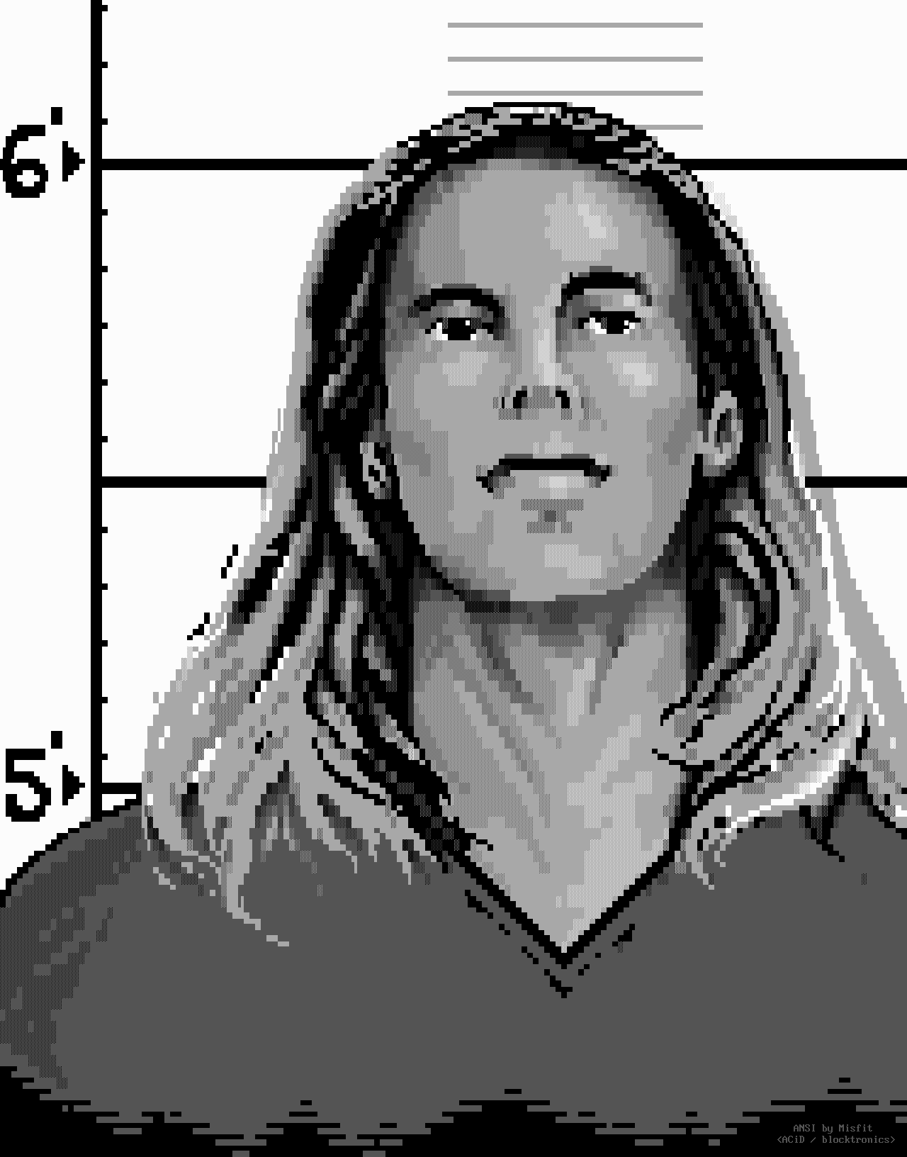 mugshot, face, man, hair, long hair, white, gray, grey, grayscale, misfit